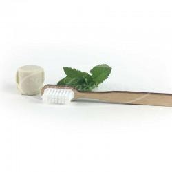 Dentifrice solide à la menthe et brosse à dents rechargeable écologique en bois de hêtre