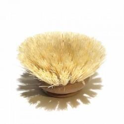 Tête de brosse vaisselle en fibre végétale